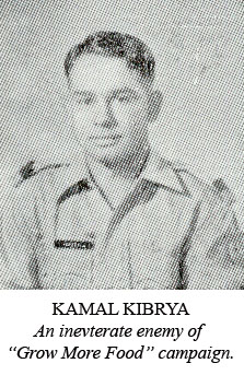 11-13941 Kamal Kibrya-TPU1